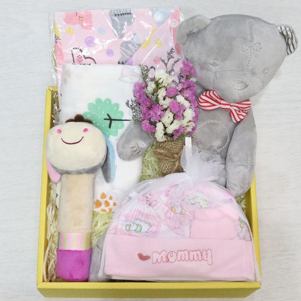 its a girl newborn baby gift box